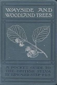 Wayside and Woodland Trees by Edward Step