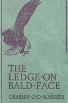 The Ledge on Bald Face by Sir Roberts Charles G. D.