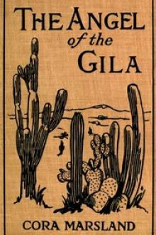 The Angel of the Gila