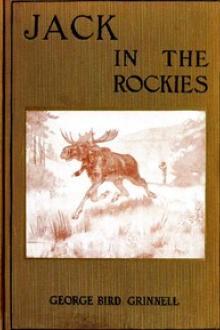 Jack in the Rockies