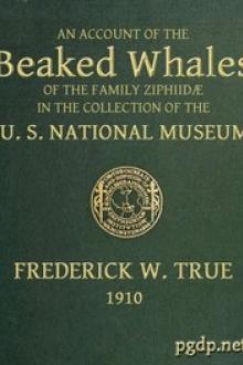 The Beaked Whales of the Family Ziphiidae