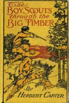 The Boy Scouts Through the Big Timber by active 1909-1917 Carter Herbert