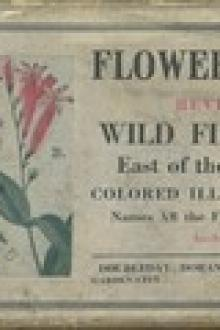 Flower Guide: Wild Flowers East of the Rockies