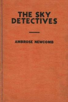 The Sky Detectives by Ambrose Newcomb