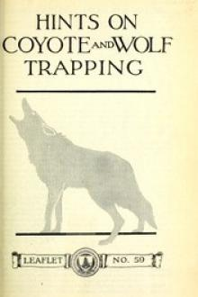 Hints on Wolf and Coyote Trapping