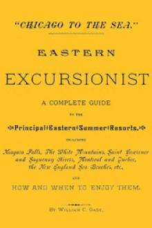"""Chicago to the Sea."" Eastern Excursionist by William C. Gage"