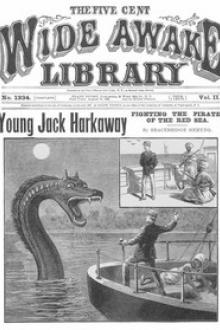 Young Jack Harkaway Fighting the Pirates of the Red Sea by Bracebridge Hemyng
