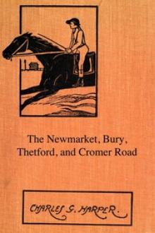 The Newmarket, Bury, Thetford and Cromer Road by Charles G. Harper