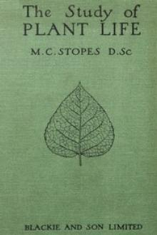 The Study of Plant Life by M. C. Stopes