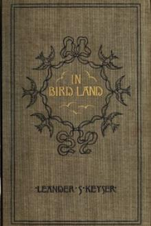 In Bird Land by Leander Sylvester Keyser
