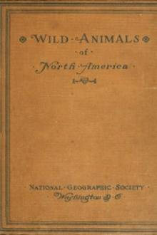 Wild Animals of North America by Edward William Nelson