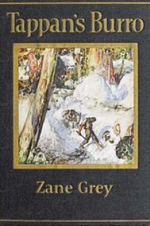 Tappan's Burro and Other Stories by Zane Grey