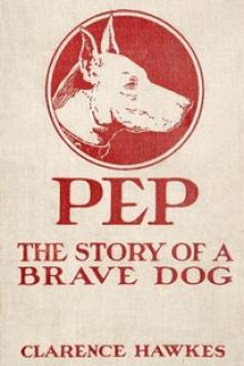 Pep by Clarence Hawkes
