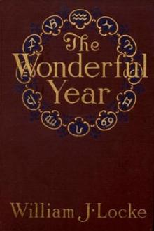 The Wonderful Year by William J. Locke