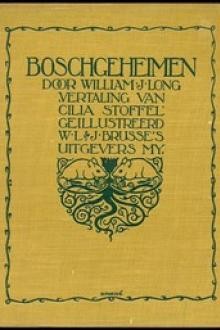 Boschgeheimen by William J. Long
