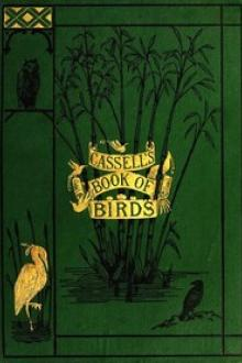 Casell's Book of Birds by Alfred Edmund Brehm, Thomas Rymer Jones