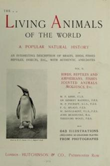 The Living Animals of the World Vol 2 of 2 by Frederick Courteney Selous, Louis Wain, Harry Johnston, others, C. J. Cornish