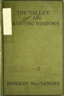 The Valley of Squinting Windows by Brinsley MacNamara
