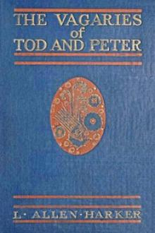 The Vagaries of Tod and Peter by L. Allen Harker