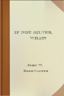 If Not Silver, What? by John W. Bookwalter