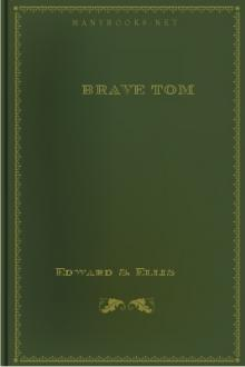 Brave Tom by Lieutenant R. H. Jayne