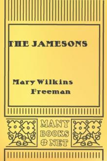 The Jamesons by Mary E. Wilkins