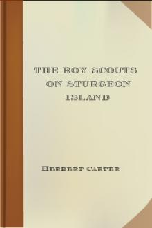 The Boy Scouts on Sturgeon Island by active 1909-1917 Carter Herbert