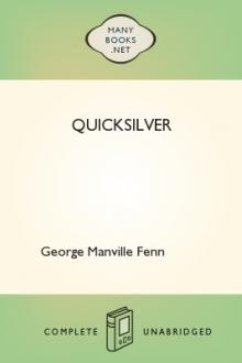 Quicksilver by George Manville Fenn