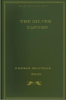 The Silver Canyon by George Manville Fenn
