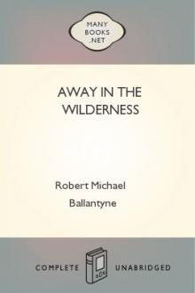 Away in the Wilderness by Robert Michael Ballantyne