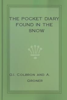 The Pocket Diary Found in the Snow