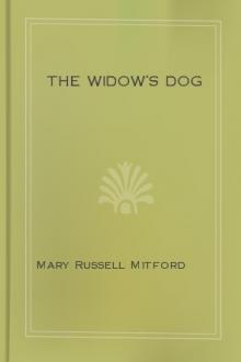The Widow's Dog