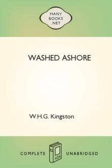 Washed Ashore by W. H. G. Kingston