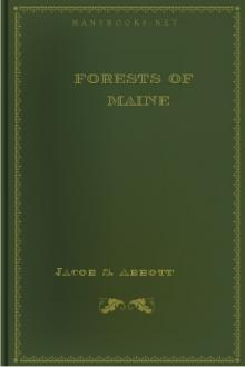 Forests of Maine by Jacob Abbott