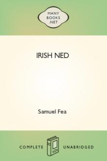 Irish Ned by Samuel Fea
