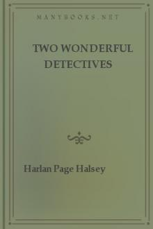 Two Wonderful Detectives by Harlan Page Halsey