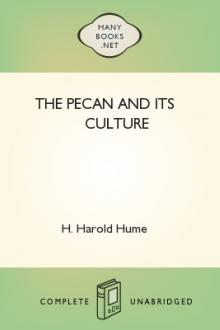 The Pecan and its Culture by H. Harold Hume