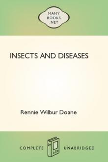 Insects and Diseases by Rennie Wilbur Doane