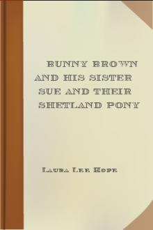 Bunny Brown and His Sister Sue and Their Shetland Pony by Laura Lee Hope