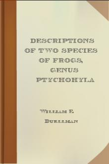 Descriptions of Two Species of Frogs, Genus Ptychohyla