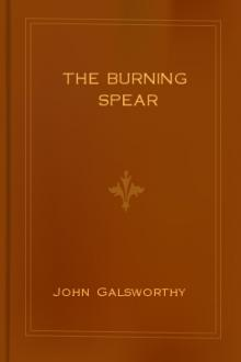 The Burning Spear by John Galsworthy