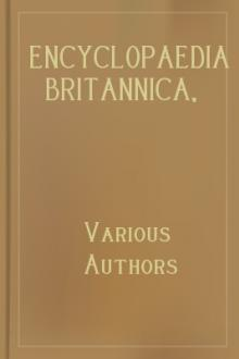 Encyclopaedia Britannica, 11th Edition, Volume 5, Slice 4