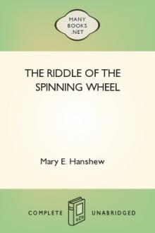 The Riddle of the Spinning Wheel by Thomas W. Hanshew, Mary E. Hanshew