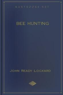 Bee Hunting by John Ready Lockard