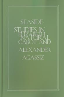 Seaside Studies in Natural History by Elizabeth Cabot Cary Agassiz, Alexander Agassiz