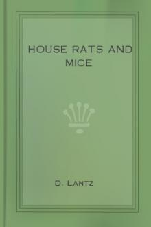 House Rats and Mice