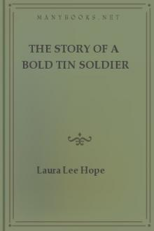 The Story of a Bold Tin Soldier by Laura Lee Hope