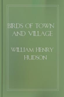 Birds of Town and Village by W. H. Hudson