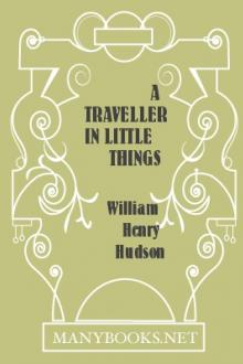 A Traveller in Little Things by W. H. Hudson