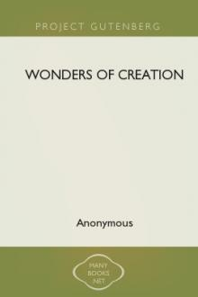 Wonders of Creation by Anonymous
